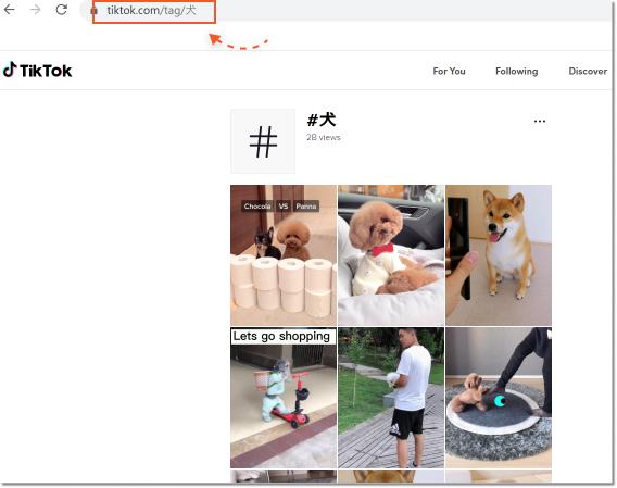 tiktok-search-by-hashtag
