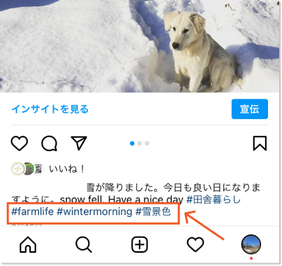 instagram-hashtag-in-feed