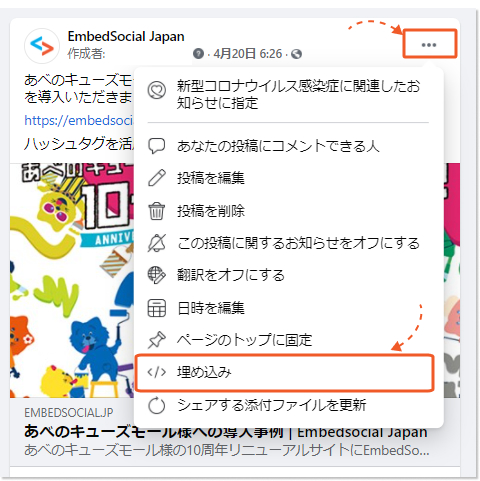 facebook-post-select-embed-option